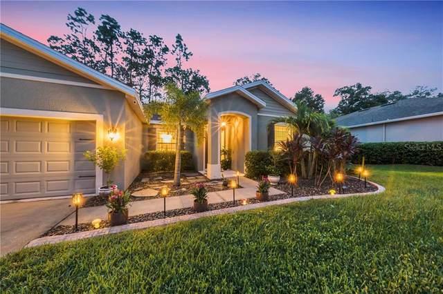 110 Sweet Birch Lane, Deland, FL 32724 (MLS #V4915314) :: Florida Life Real Estate Group