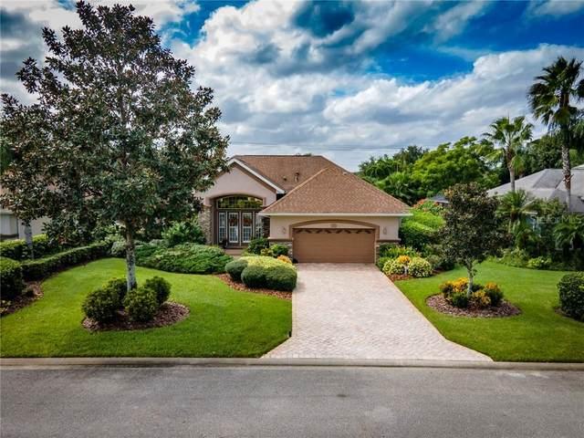712 Stonewood Court, New Smyrna Beach, FL 32168 (MLS #V4915644) :: Alpha Equity Team