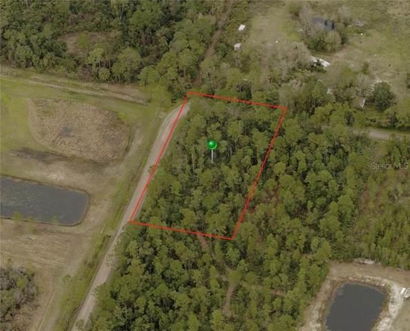 Brasher Road, New Smyrna Beach, FL 32168 (MLS #V4915649) :: The Robertson Real Estate Group