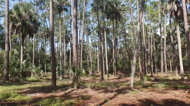 360 Old Mill Road, Enterprise, FL 32725 (MLS #V4915781) :: RE/MAX Local Expert