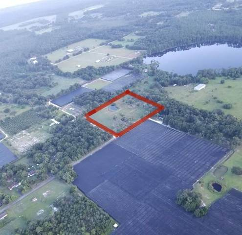932 Blackburn Road, Pierson, FL 32180 (MLS #V4915844) :: Griffin Group