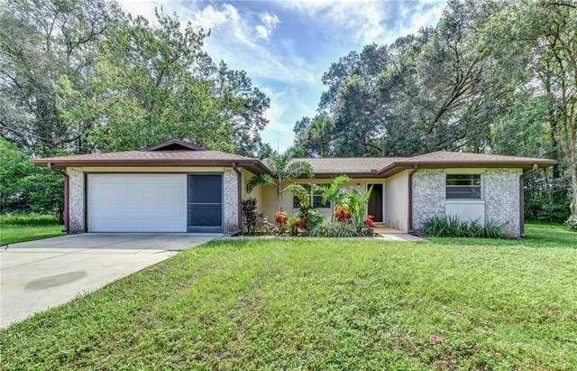 210 Sandyhook Lane, Deland, FL 32724 (MLS #V4915900) :: Griffin Group