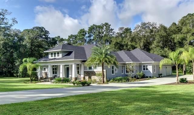 875 Lincoln Rd, Deland, FL 32724 (MLS #V4915933) :: Florida Life Real Estate Group