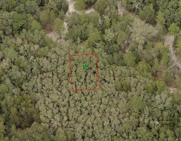 Baltimore Avenue, Orange City, FL 32763 (MLS #V4915982) :: Griffin Group