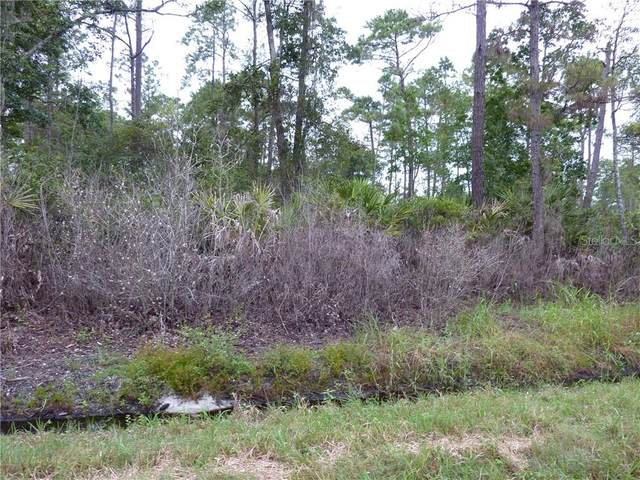 1170 11TH, Deland, FL 32724 (MLS #V4916041) :: Carmena and Associates Realty Group