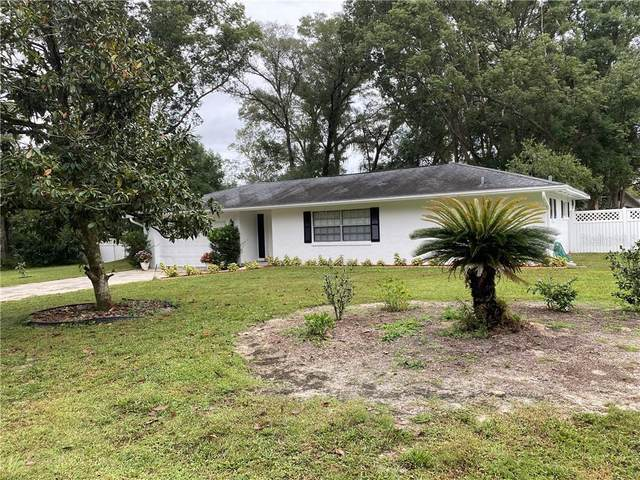 31118 Westward Ho Avenue, Sorrento, FL 32776 (MLS #V4916066) :: Visionary Properties Inc