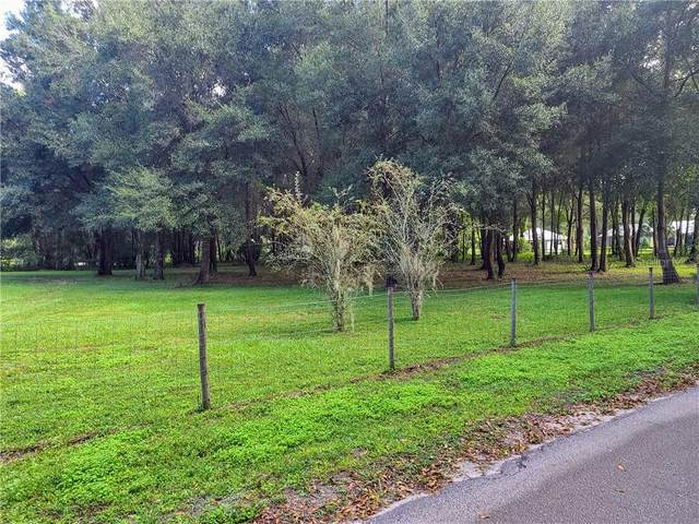 Tangerine Avenue, Lake Helen, FL 32744 (MLS #V4916084) :: Pristine Properties