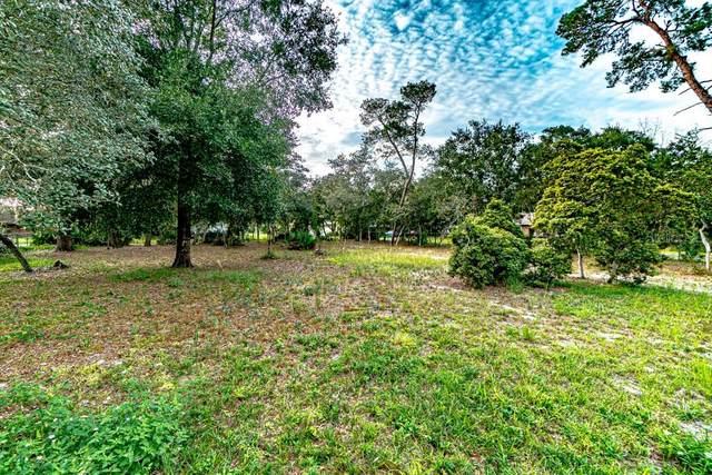 1394 3RD Avenue, Deland, FL 32724 (MLS #V4916089) :: Burwell Real Estate
