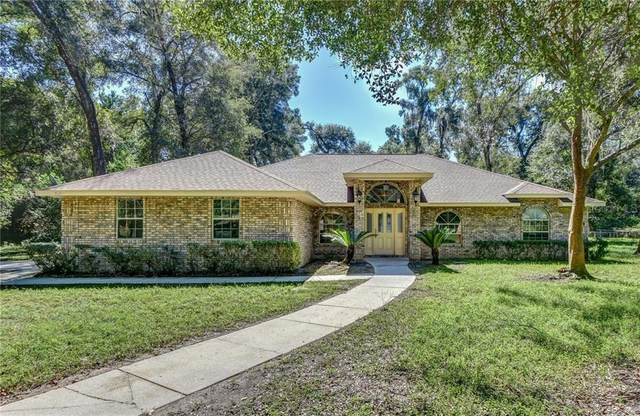 710 Shane Drive, Deland, FL 32720 (MLS #V4916207) :: Armel Real Estate