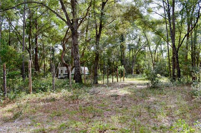 407 Raulerson Road, Seville, FL 32190 (MLS #V4916335) :: Southern Associates Realty LLC