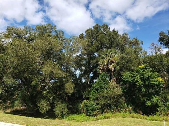 1989 S Farm Road, Deland, FL 32720 (MLS #V4916451) :: Zarghami Group