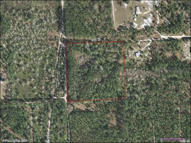 Doe Trail, Palatka, FL 32178 (MLS #V4916457) :: Sarasota Home Specialists