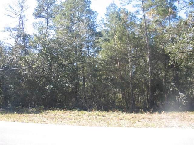 243 Ivanhoe Drive, Satsuma, FL 32189 (MLS #V4916706) :: Bob Paulson with Vylla Home