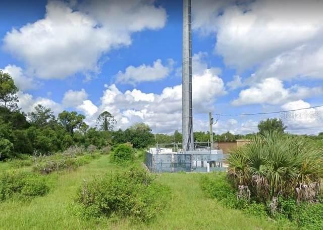 17150 Brown Road, Odessa, FL 33556 (MLS #V4916745) :: Team Bohannon Keller Williams, Tampa Properties