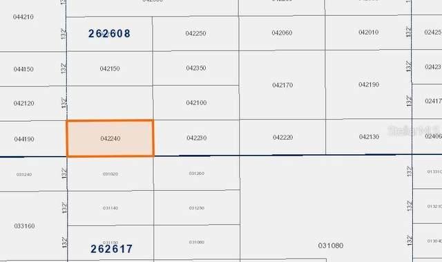 No Street, Polk City, FL 33868 (MLS #V4916852) :: Griffin Group