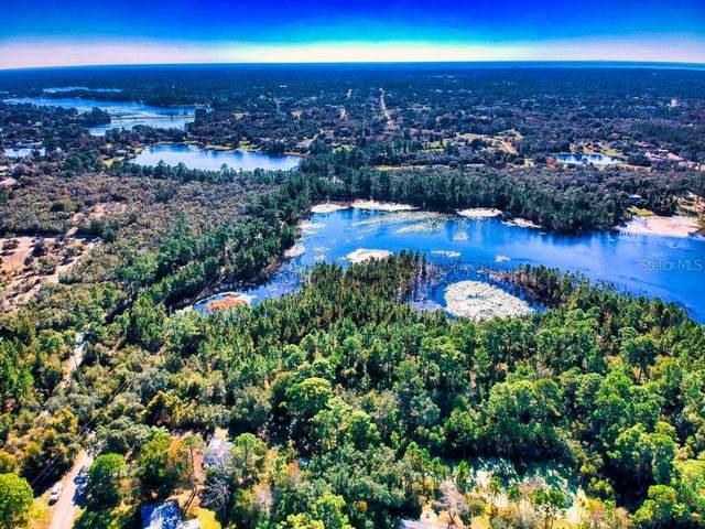 Melshire Avenue, Deltona, FL 32738 (MLS #V4916887) :: Young Real Estate