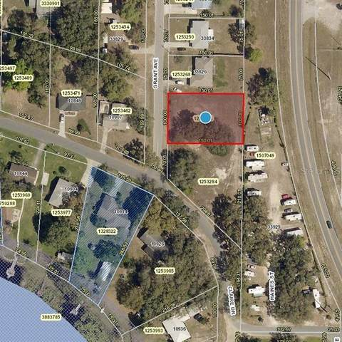 Grant Ave, Leesburg, FL 34788 (MLS #V4916969) :: Griffin Group