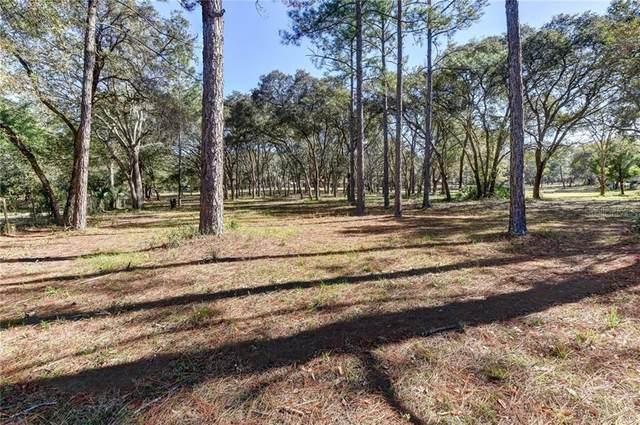 390 Foothill Farms Road, Orange City, FL 32763 (MLS #V4917057) :: Griffin Group