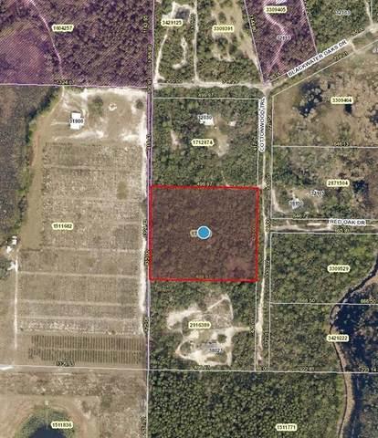 Cottonwood Trail, Eustis, FL 32736 (MLS #V4917131) :: Griffin Group