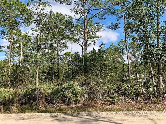 East Parkway, Deland, FL 32724 (MLS #V4917162) :: Baird Realty Group