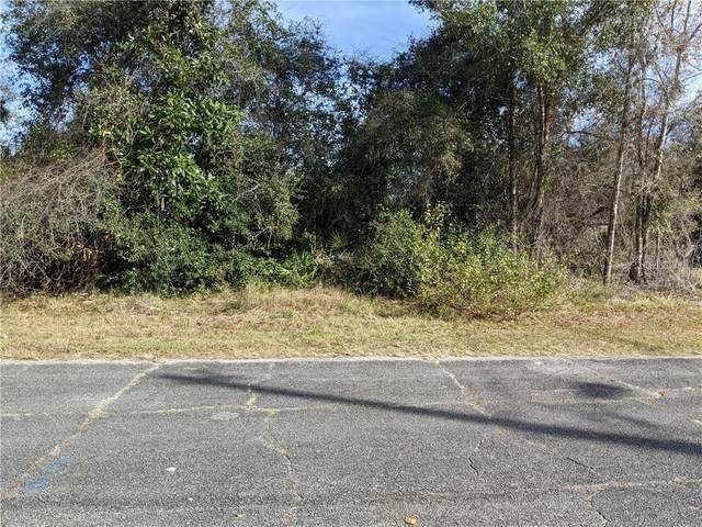 W Orange Road, Deland, FL 32724 (MLS #V4917199) :: Premier Home Experts