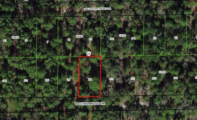 Dunnellon, FL 34433 :: Baird Realty Group