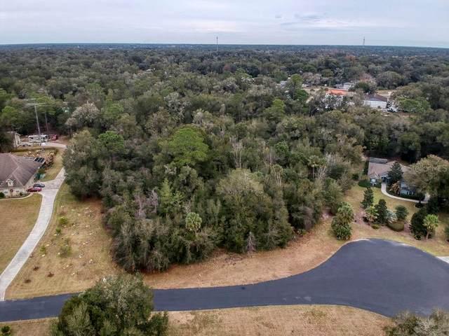 1815 Glenwood Oaks Lane, Deland, FL 32720 (MLS #V4917237) :: Armel Real Estate