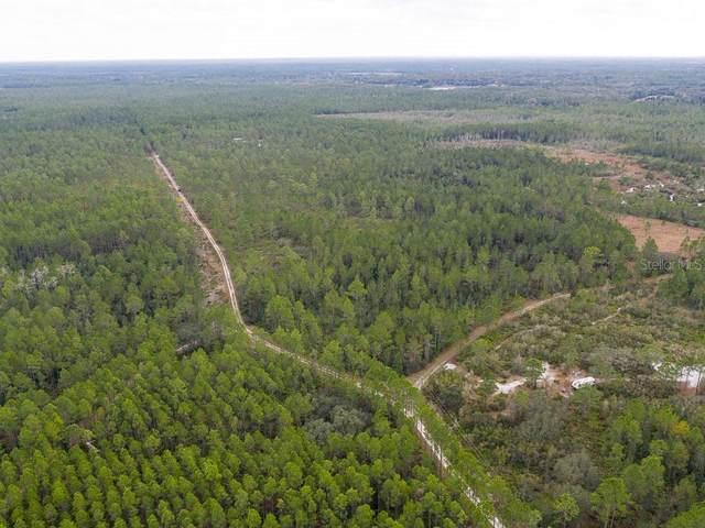 500 Volusian Forest Trail, Pierson, FL 32180 (MLS #V4917501) :: Bridge Realty Group