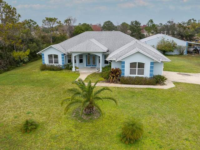 1025 E Flying M Court, Edgewater, FL 32132 (MLS #V4917560) :: Bob Paulson with Vylla Home