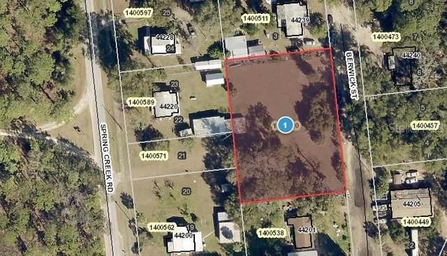 Spring Creek Road, Paisley, FL 32767 (MLS #V4917713) :: BuySellLiveFlorida.com