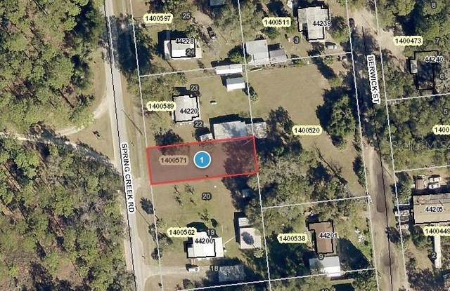 Spring Creek Road, Paisley, FL 32767 (MLS #V4917714) :: BuySellLiveFlorida.com