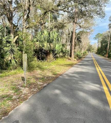 Buckles Road, Pierson, FL 32180 (MLS #V4917735) :: Bridge Realty Group