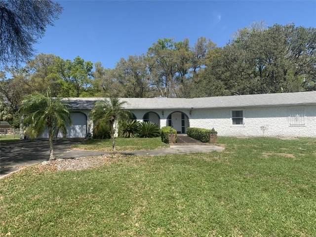 1276 Greenland Terrace, Deland, FL 32720 (MLS #V4917972) :: Sell & Buy Homes Realty Inc