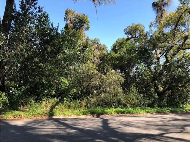 201 S Brooks Avenue, Deland, FL 32720 (MLS #V4917980) :: Everlane Realty