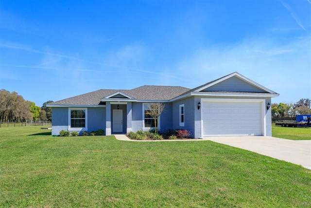 155 Hilsenbeck Road, Pierson, FL 32180 (MLS #V4917987) :: The Duncan Duo Team