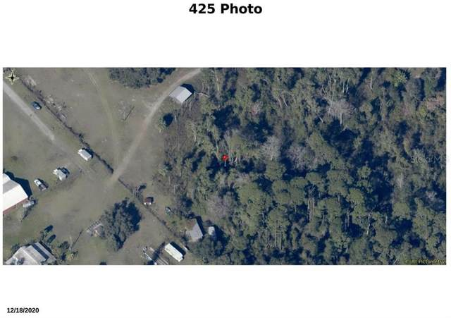 435 S State Road 415, Osteen, FL 32764 (MLS #V4918024) :: CGY Realty
