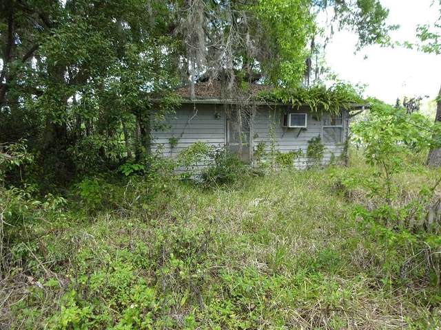 56500 Elm Road, Astor, FL 32102 (MLS #V4918046) :: Everlane Realty