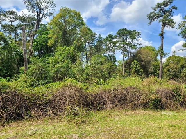 0 W Washington Avenue, Pierson, FL 32180 (MLS #V4918164) :: Dalton Wade Real Estate Group
