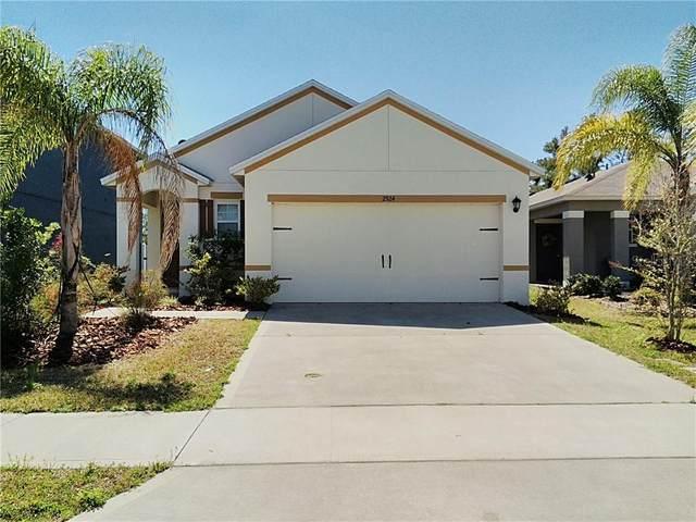 2924 Taton Trace, New Smyrna Beach, FL 32168 (MLS #V4918180) :: BuySellLiveFlorida.com