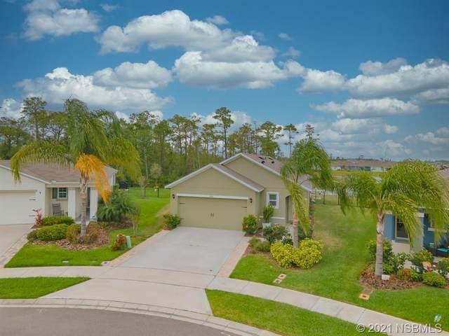 2929 Taton Trace, New Smyrna Beach, FL 32168 (MLS #V4918279) :: BuySellLiveFlorida.com