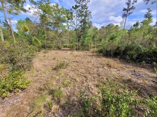 Ninemile Point Road, Pierson, FL 32180 (MLS #V4918434) :: Dalton Wade Real Estate Group