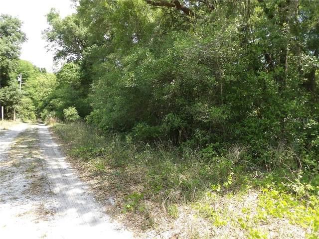 Elkridge Drive, Mount Plymouth, FL 32776 (MLS #V4918466) :: Everlane Realty