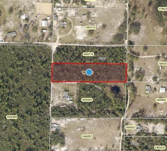 Cooter Pond Road, Deland, FL 32720 (MLS #V4918529) :: Armel Real Estate