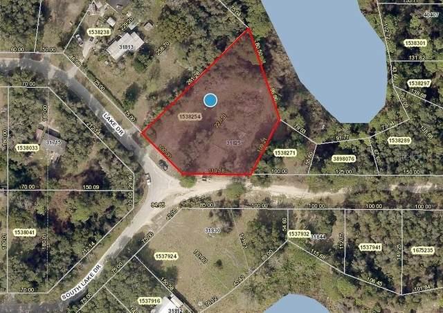 31825 Lake Drive, Eustis, FL 32736 (MLS #V4918530) :: Everlane Realty