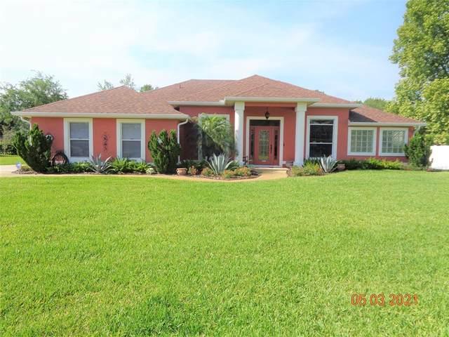 512 Tera Plantation Lane, Debary, FL 32713 (MLS #V4918561) :: The Heidi Schrock Team