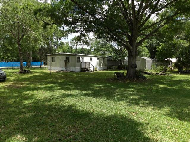 23936 Armadillo Road, Astor, FL 32102 (MLS #V4918799) :: Team Borham at Keller Williams Realty