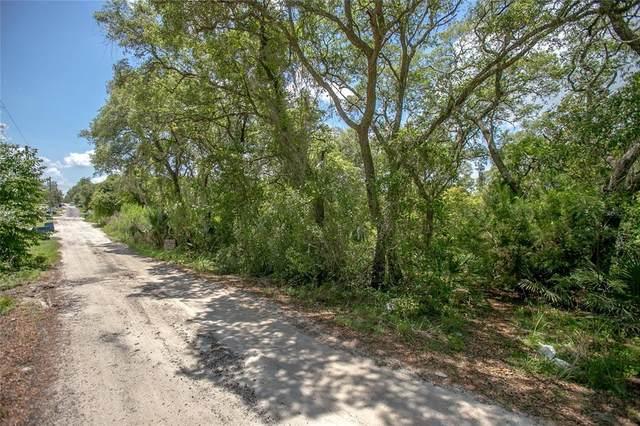 226 S Cedar Avenue, Orange City, FL 32763 (MLS #V4918828) :: Armel Real Estate