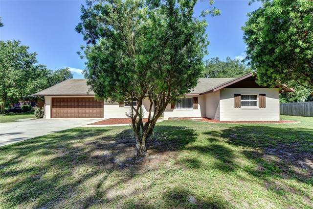 260 Paradise Drive, Deland, FL 32720 (MLS #V4918830) :: Team Borham at Keller Williams Realty