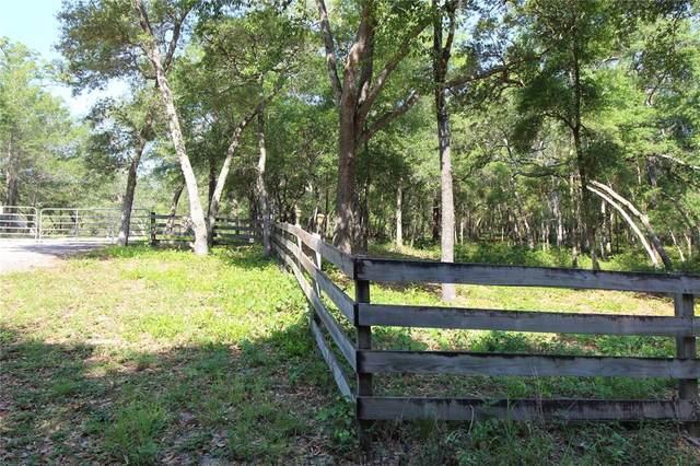 1425 Renbar Road, De Leon Springs, FL 32130 (MLS #V4918864) :: Armel Real Estate