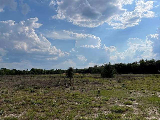 Lot C2 Old Titusville Road, Deltona, FL 32738 (MLS #V4918904) :: The Hesse Team